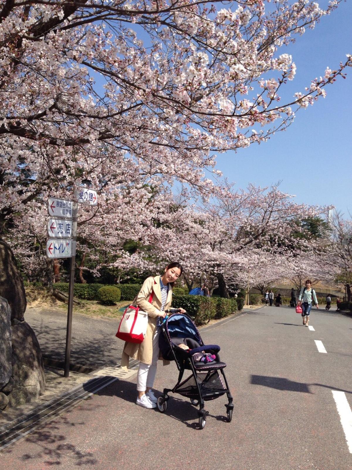 春日市 白水大池公園 桜が綺麗でした☆ | 福岡県筑紫野市と ...