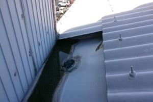 福岡市 博多区 STS 雨漏れ修繕工事 施工前