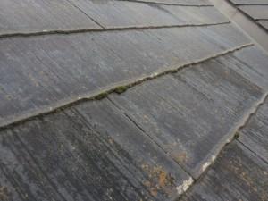筑紫野市 塗装工事 F様邸 高圧洗浄 施工前