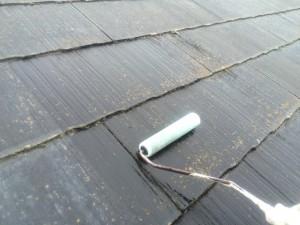 筑紫野市 塗装工事 F様邸 カビ除去剤塗布状況