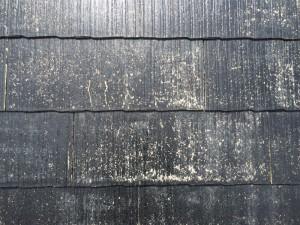 筑紫野市 F様邸 屋根 塗装工事 タスペーサー取付け 完了