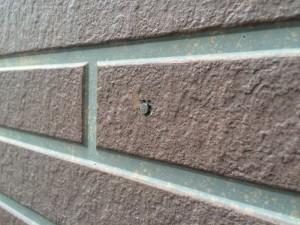 サイディング外壁 釘打ち込み 施工前