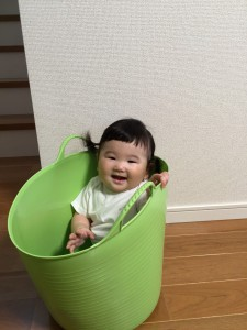 すーちゃん☆ 洗濯物かごに入って喜ぶ♡
