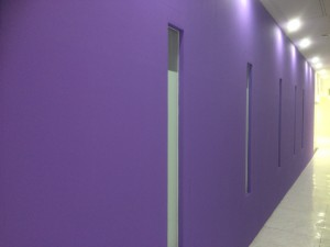 福岡市中央区 塗装工事 ミーナ天神 内部壁塗装  完了