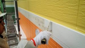 篠栗町 アパート塗装工事 帯 中塗り