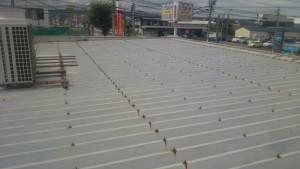 大野城市 A様 所有 テナント 塗装工事 板金 折半屋根塗装 施工前