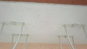 大野城市 レヴール筒井 軒裏 塗装工事 下地補修 施工前