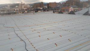 福岡県 春日市 天国社 折半屋根 塗装工事 施工前